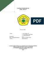 LAPORAN_PRAKTIKUM_AMIL_ASETAT.docx
