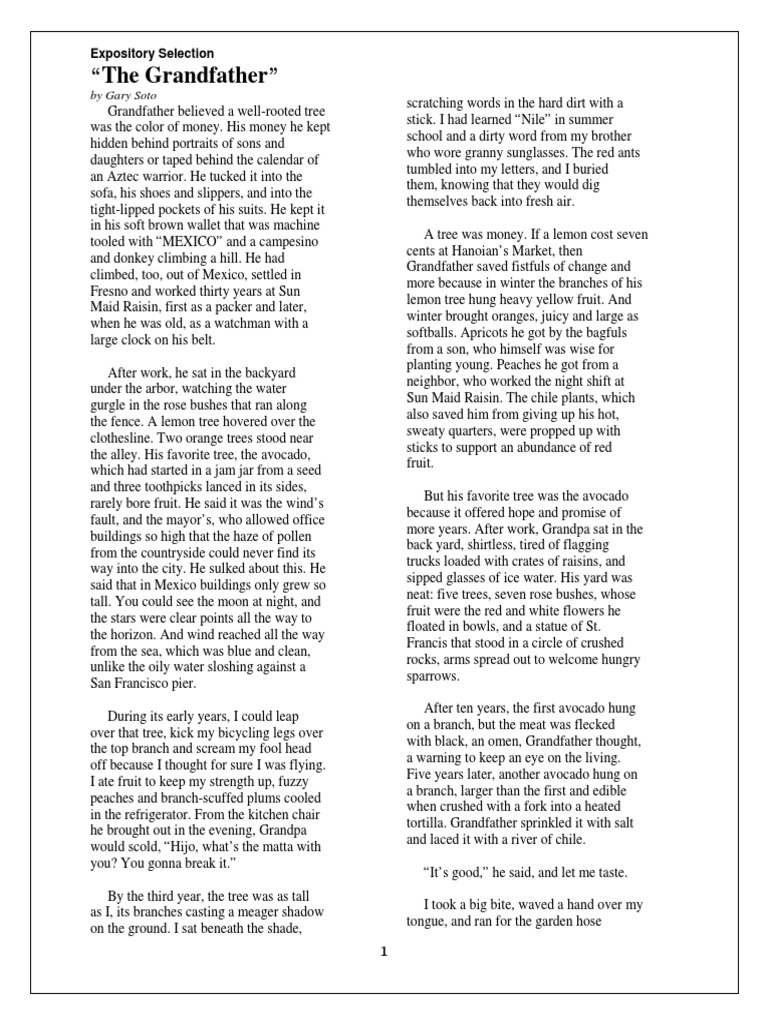 The grandfather by gary soto essay best blog post writer website