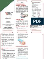 Leaflet Cts 1