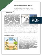 Influencia de Los Cambios Climaticos en Bolivia