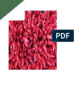 agrupar imagen.doc