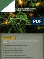 Biolistrik Pada Tubuh Manusia