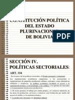 Para Constitucional (1)