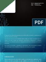 GonzálezAlva_Alejandro_M01S2AI3.pptx