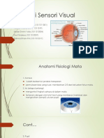 Ppt Persepsi Sensori Pada Mata