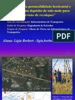 Apresentação Lígia Berbert