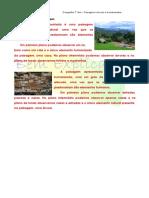 A.1.2 Ficha de Trabalho Paisagens Naturais e Humanizada 1 Soluções