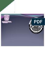 interpretaciondetaccerebro-100221220543-phpapp02