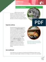 Efectos en equilibrio de la biosfera.pdf