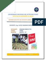 Resumen Ejcutivo Del Proyecto Minero Tia Maria
