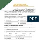 Acta-de-Constitución CPH