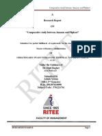 ashisifinalreport-170714092138.pdf