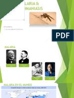 Malaria & Leizhmaniasis