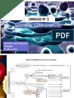 PDF-UNIDAD3_Ensomembranas_2018[1]