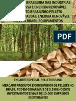 Biomassa Pellets