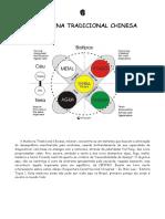 acupunturaconstitucional-131030065343-phpapp02.pdf