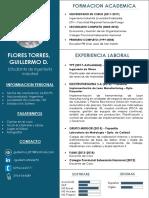 CV Flores Guillermo