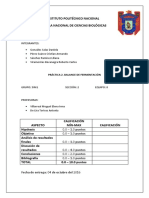 P2-BALANCE-DE-FERMENTACION.docx