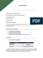 Modelo de Informe 2018
