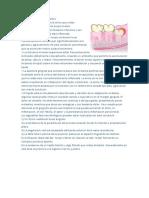 Definición de Pericoronaritis Modificando