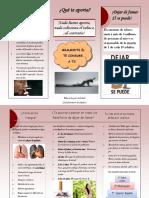 folleto-141202155608-conversion-gate01.pdf