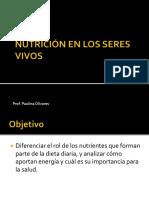 Sistema c r r Nutrientes