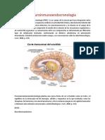 Psiconeuroinmunoendocronologia