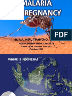 Malaria in Pregnancy (Oct Presentation)