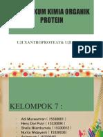 PPT Kimdas Protein 7