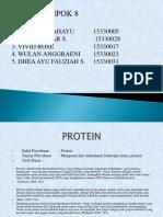 Kimor Hidrolisis Protein 8