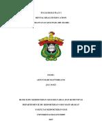 Deskripsi Roleplay DHE Komunitas (Ainun Habi M 027)