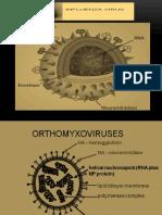 klh-influenza.pptx