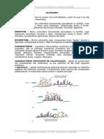 02 - Glossário Carbonatos Microbiais