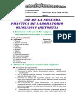Llanos Machuca Mariela Informe 2 (1).Docx