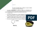 ALCALOIDES PIRIDINICOS