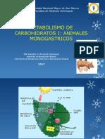 CARBOHIDRATOS 2017.pdf