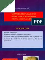 14 Ictericia Neonatal