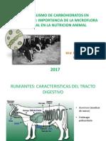 Metabolismo de Carbohidratos 2017 2 Rumiantes