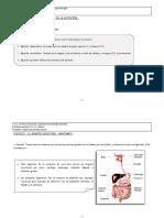tema23.pdf