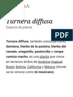 Turnera Diffusa - Wikipedia, La Enciclopedia Libre