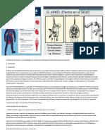 El Síndrome Del Arnés Es Una Patología Que Requiere La Combinación de Dos Factores Para Su Aparición