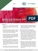 Bacillus Cereus SPP ISO 7932