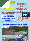 carrera_con_futuro1.ppt