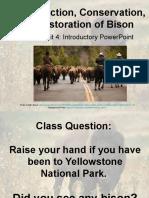 bison-conservation