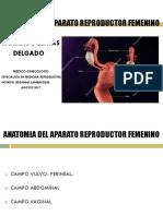 Clase 1 - Anatomia Del Aparato Reproductor Femenino 2016 (1)