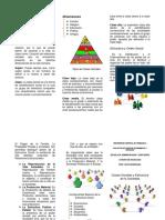 Triptico Clases Sociales y Estructura Social
