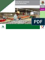 Manual_Practico-Conservacionyrestauracion-cactaceas_suculentas.pdf