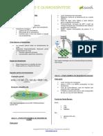 172_Fotossintese_e_qumiossintese_-_Resumo.pdf