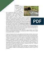 Contaminación de Cuencas Hídricas