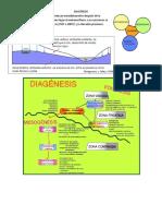 Los Procesos Diageneticos